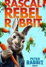 Tavşan Peter full hd film izle 2018