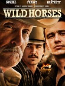 Vahşi Atlar – Wild Horses 2015 full hd film izle